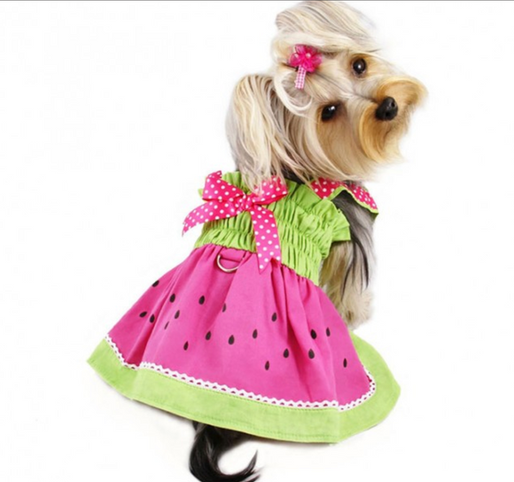 Juicy Watermelon Dog Sundress with Large D-ring - Le Pet Luxe