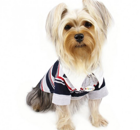 Adorable Colored Striped Polo Shirt - Le Pet Luxe