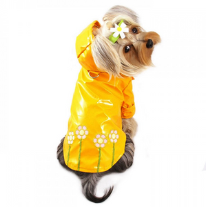 Polka Dots and Daisies Raincoat - Le Pet Luxe