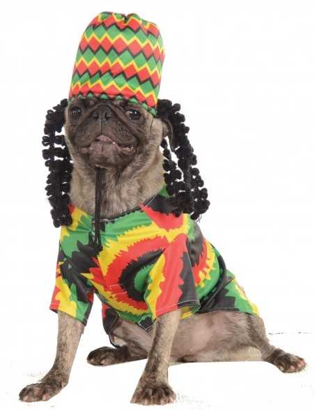 Rasta Dog Costume - le-pet-luxe