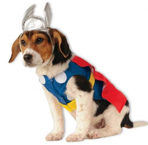 Thor Dog Costume - le-pet-luxe