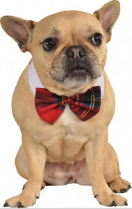 Plaid Dog Bowtie - Le Pet Luxe