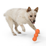 Rumpus Dog Chew Toy - Le Pet Luxe