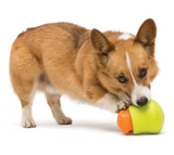 Toppl Treat Dog Toy - Le Pet Luxe