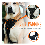 Mighty Paw Vehicle Safety Harness - Le Pet Luxe