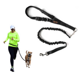 Hands Free Bungee Leash Set - Le Pet Luxe