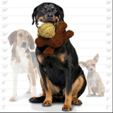 MIGHTY- Microfiber Ball Monkey - Le Pet Luxe