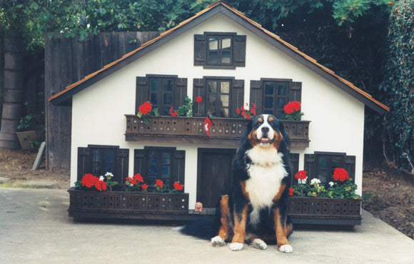La Petite Maison Custom Swiss Chalet Dog House - le-pet-luxe