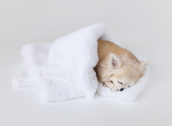 Divine Dog Blanket ~ White - Le Pet Luxe