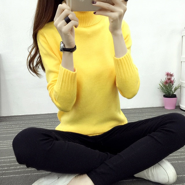 Women Autumn Winter Long Sleeve Knitted Women Sweaters And Pullovers Turtleneck Sweater Female Jumper Pull Femme-lilugal