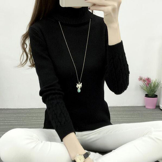 Women Turtleneck Winter Sweater Women 2018 New Long Sleeve Elasticity Knitted Women Sweaters Pullovers Female Casual Tops K862-lilugal