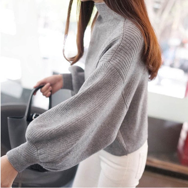 Women Ladies Winter Warm Casual Sweater Turtleneck Batwing Long Sleeve Pullovers Loose Knitted Jumper Tops Sweaters-lilugal