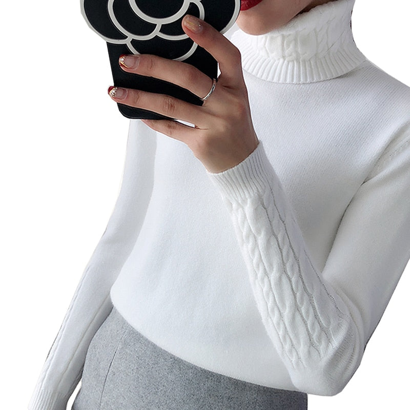 Thick Warm Women Turtleneck Sweater 2018 Autumn Winter Knit Women Sweaters And Pullover Female Tricot Jumper Pull Femme Pullover-lilugal