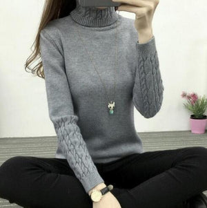 Women Turtleneck Sweaters 2018 Winter Thick Warm Sweaters And Pullovers Knit Long Sleeve Cashmere Sweater Female Jumper Tops-lilugal