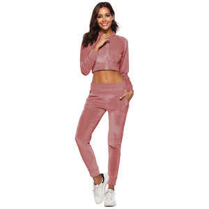 Women Velour Sets Crop Top and Trousers 2 Piece