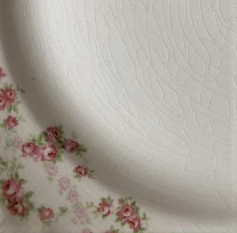 crazing floral vintage china plate closeup