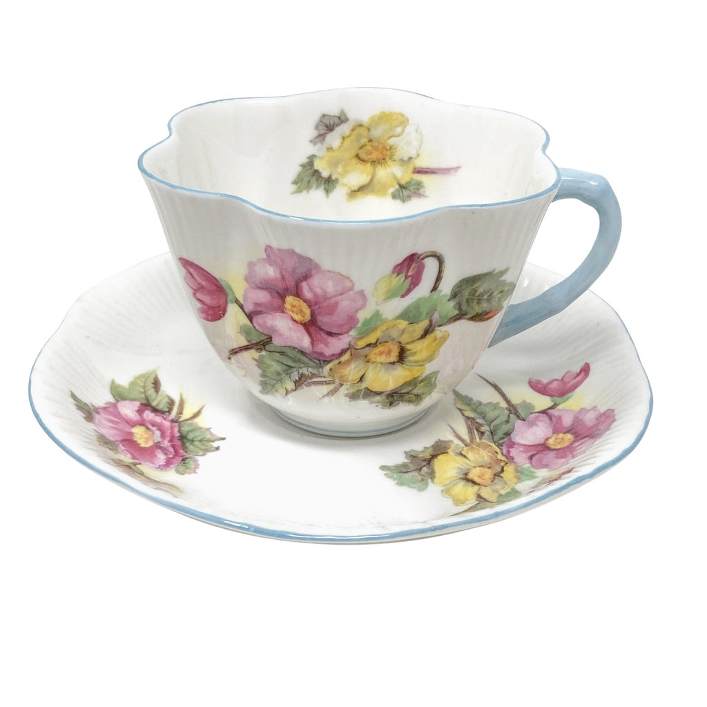 Shelley Begonia | Teacup & Saucer | Shelley - The Brooklyn Teacup