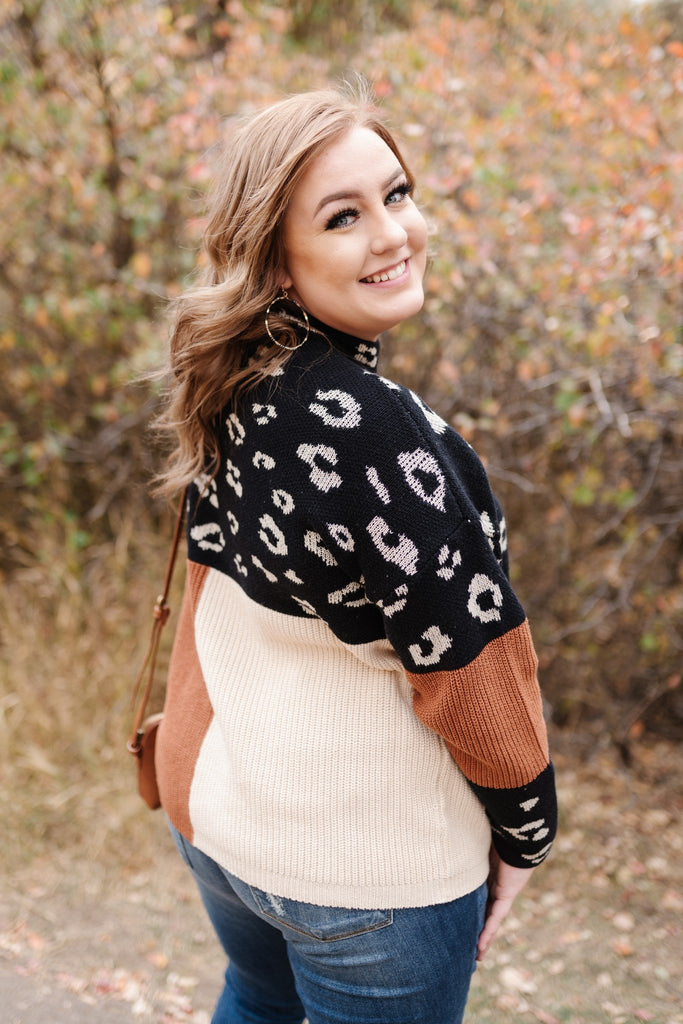 The Trifecta In Leopard Colorblock Sweater