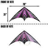 WindNSun EZ Sport 70 Dual Control Sport Kite Purple Stripe Nylon Kite, 70 Inches Wide
