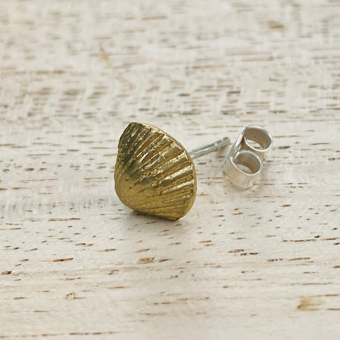 Brass clam shell earrings