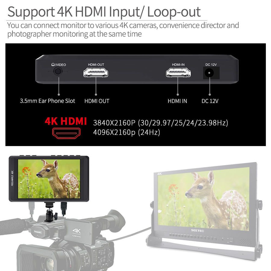 Monitor Video Field Camera