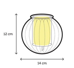 'The Magestic' Large Ribbed Self-Watering Glass Pot