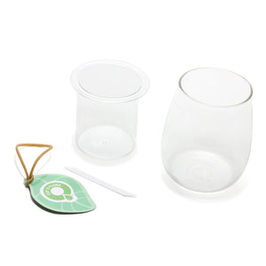 Mini Self-Watering Glass Pot