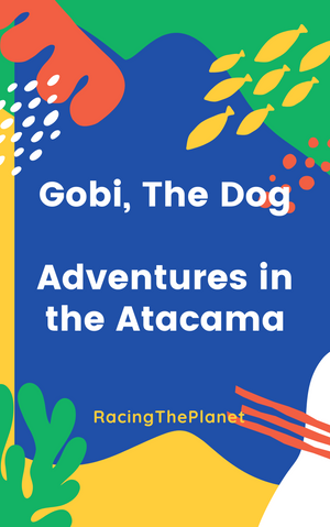 Gobi, the Dog Book Series: Adventures in the Atacama