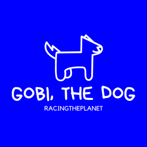 Learn with Gobi, the Dog (DVD Set)