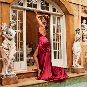 Hot Sexy Deep V Neck Burgundy Long Prom/Evening Dress Backless 1805