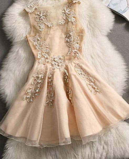 Cute Homecoming Dresses,A Line Homecoming Dress,Champagne Homecoming Dresses,Appliques Homecoming Dress,DR4663