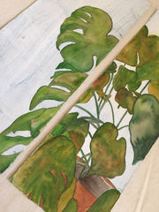 Monstera Diptych
