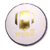 HEBE CRICKET LEATHER BALL X TEST, WHITE