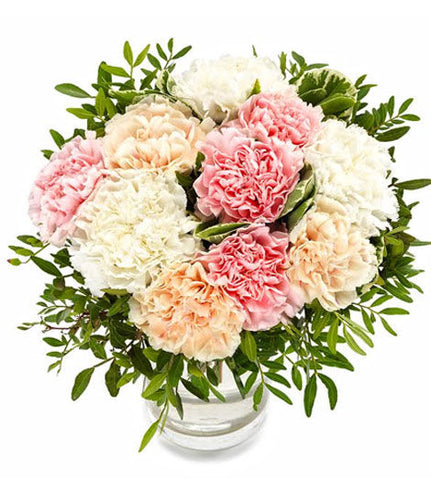 Pastel Carnations - Same Day Delivery