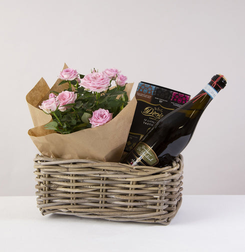 Prosecco and Rose Plant Hamper
