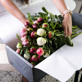 Fortnightly Flower Subscription