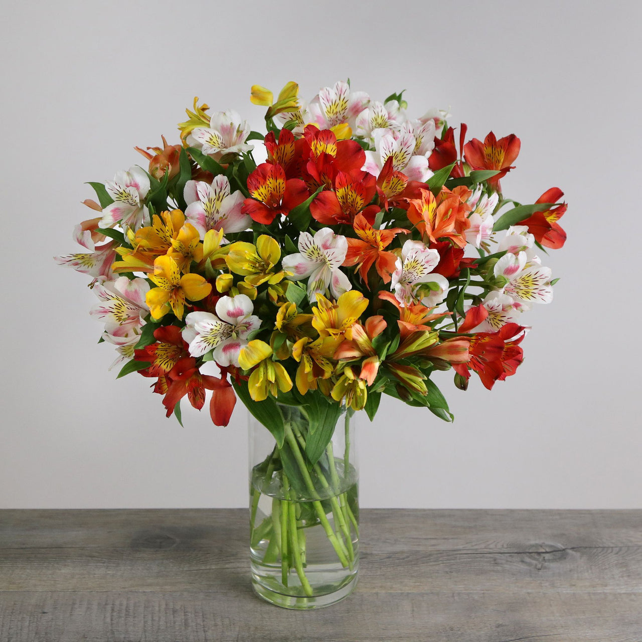 Letterbox Mixed Alstroemeria - Monthly Subscription