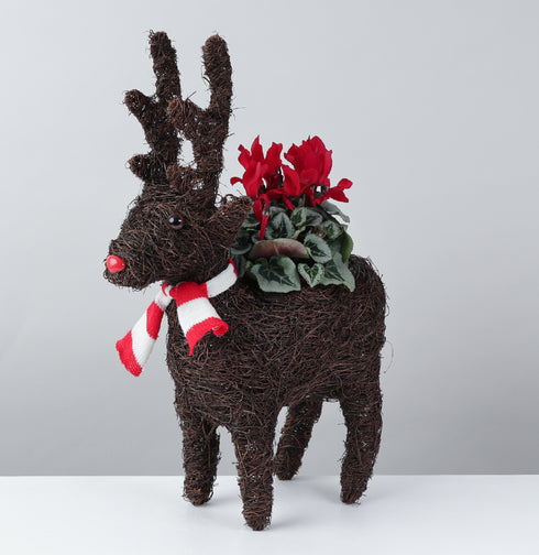 Christmas Reindeer  Planter