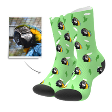 Custom Socks - Bird