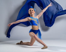 Load image into Gallery viewer, Adorable Blue and Silver Lyrical Dance Costume