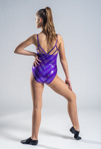 Funky Purple and Silver Leotard