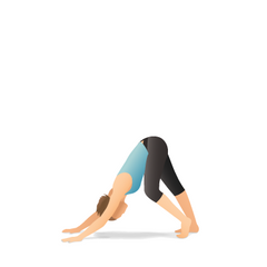Downward-Facing Dog with Hamstring Stretch