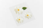 [DMV ONLY] Artbox Stationery Daisy Flower Letter Paper Set 02005282