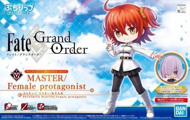 Petitrits Fate/Grand Order Master/Female Protagonist
