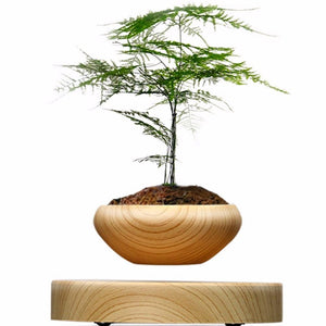Hot Magnetic Suspended Potted Plant Wood Grain Round LED Levitating for Home and Office Decoration