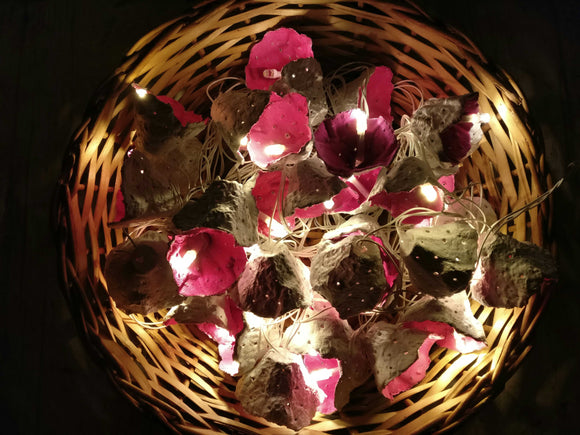 Pink Eggshell Recycled Lights