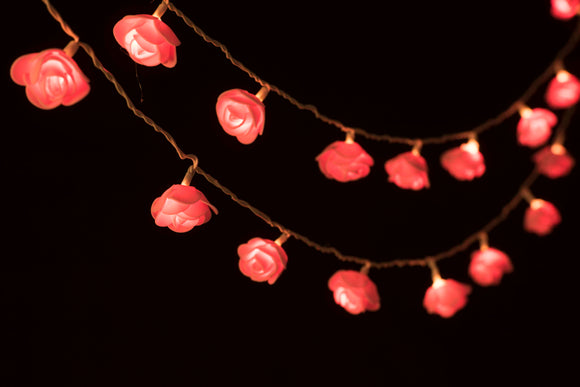 Pink Rose String Lights