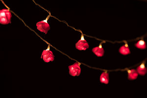 Hot Pink Rose String Lights
