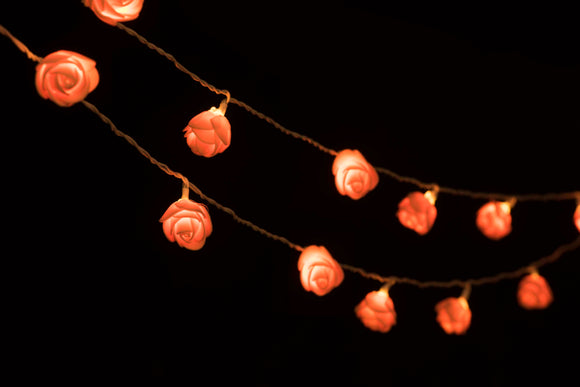 Orange Rose String Lights