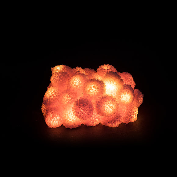 Peach Pom-Pom Recycled String Lights